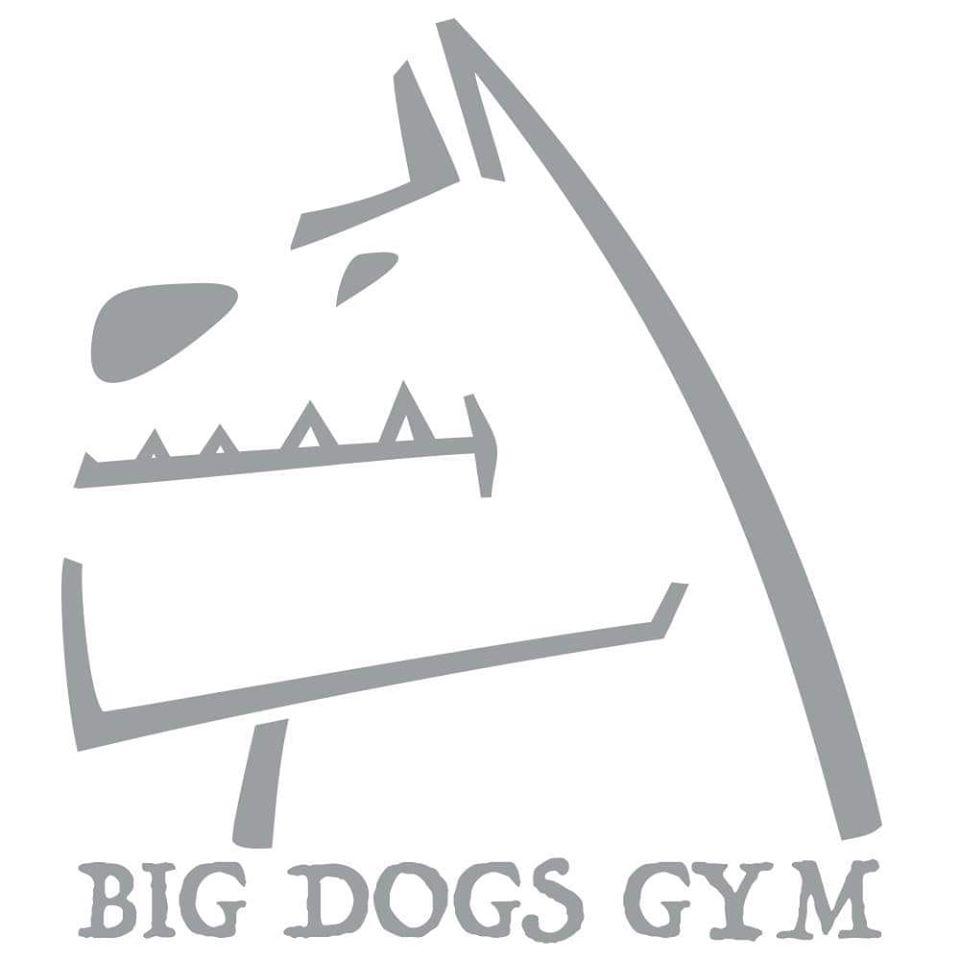 Big_dogs_logo